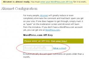 Плагин Akismet. Как бесплатно получить API-ключ Akismet.