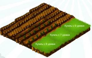 Как заработать на онлайн играх? Игра Ферма соседи.